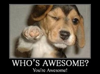You're awesome image found on The Identity Specialist blog