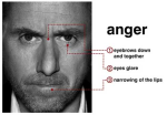 anger-tim-roth