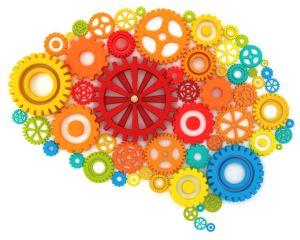brain-sca